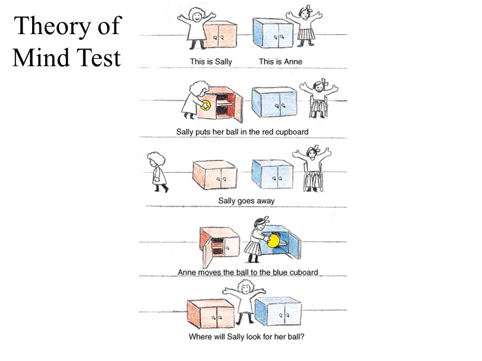Myers in Modules, Module 8 Theory of Mind Test