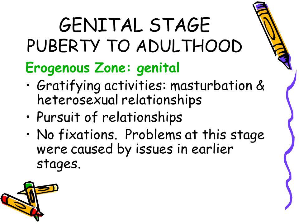 GENITAL STAGE PUBERTY TO ADULTHOOD Erogenous Zone: genital Gratifying activities: masturbation & heterosexual relationships Pursuit of relationships N