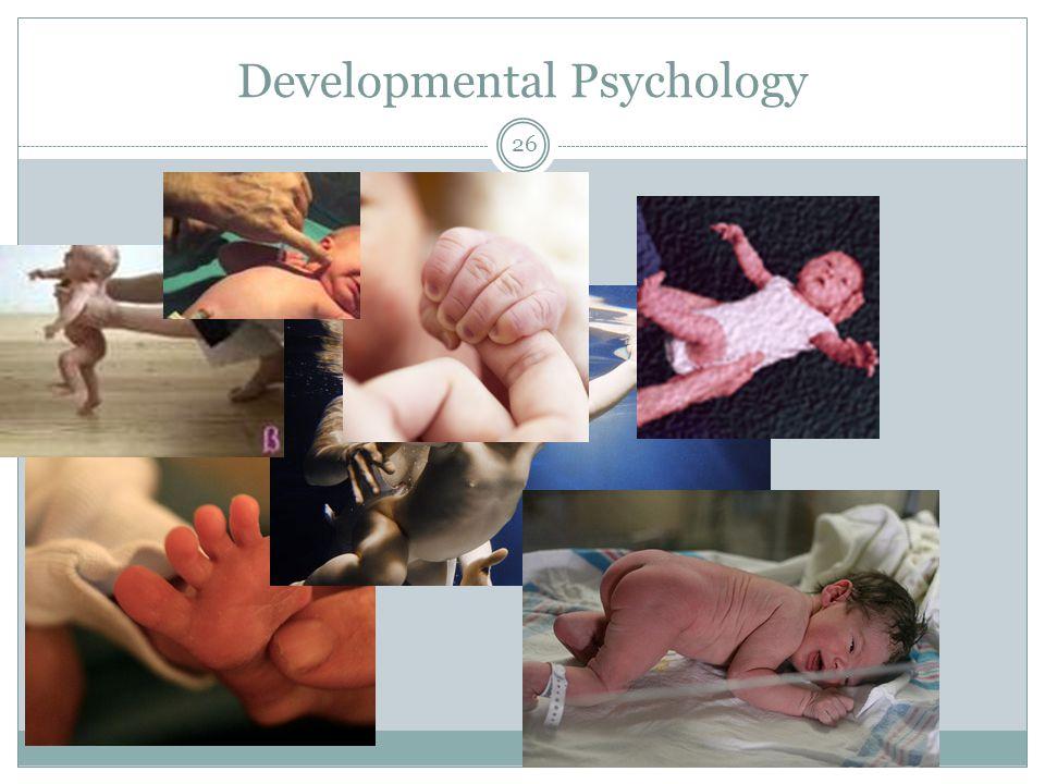 Developmental Psychology 26