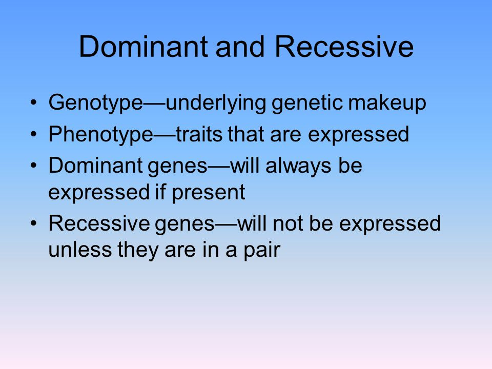 Dominant and Recessive Genotype—underlying genetic makeup Phenotype—traits that are expressed Dominant genes—will always be expressed if present Recessive genes—will not be expressed unless they are in a pair