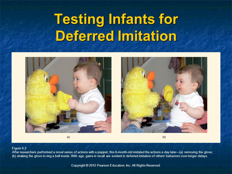 Copyright © 2012 Pearson Education, Inc. All Rights Reserved. Testing Infants for Deferred Imitation Figure 6.2 After researchers performed a novel se