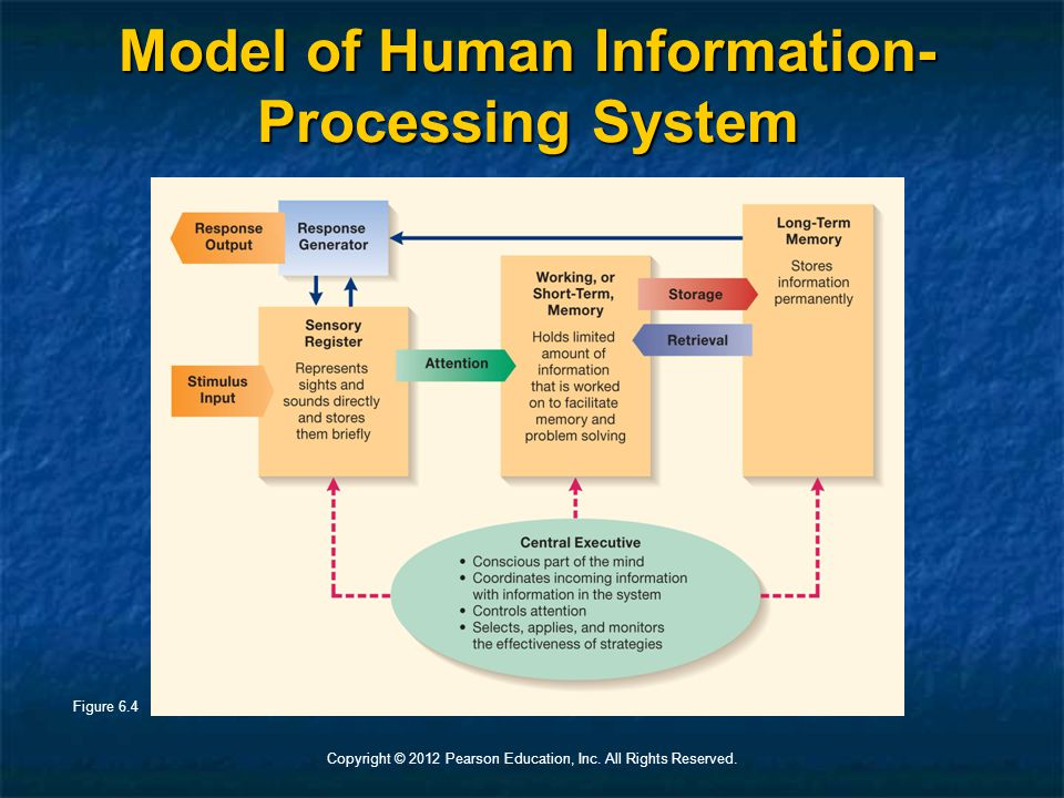 Copyright © 2012 Pearson Education, Inc. All Rights Reserved. Model of Human Information- Processing System Figure 6.4