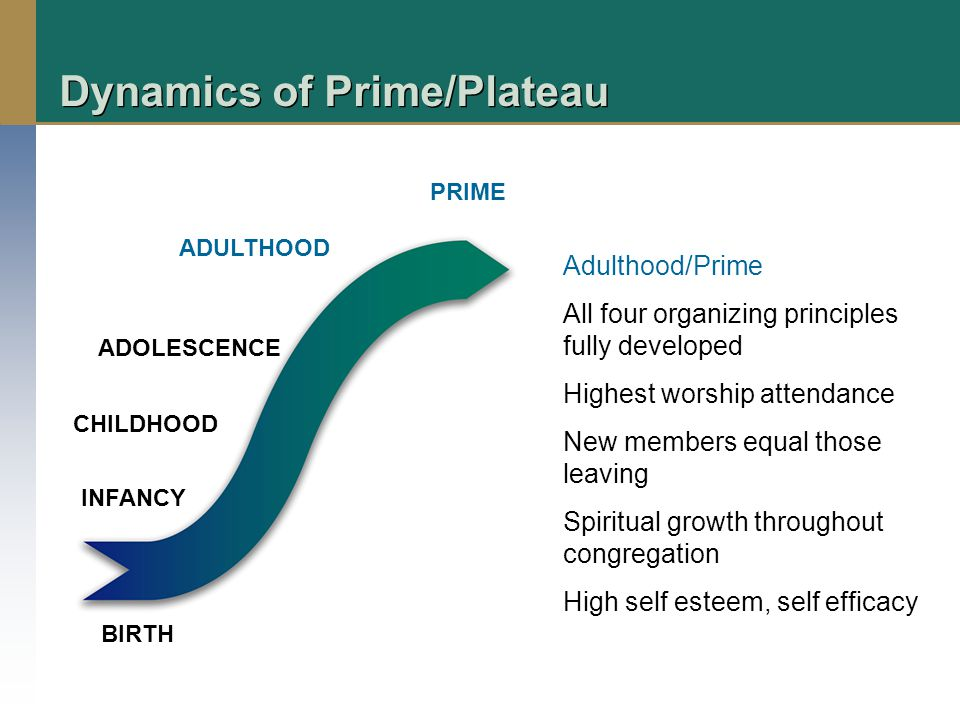 Dynamics of Prime/Plateau BIRTH INFANCY CHILDHOOD ADOLESCENCE ADULTHOOD PRIME Adulthood/Prime All four organizing principles fully developed Highest worship attendance New members equal those leaving Spiritual growth throughout congregation High self esteem, self efficacy