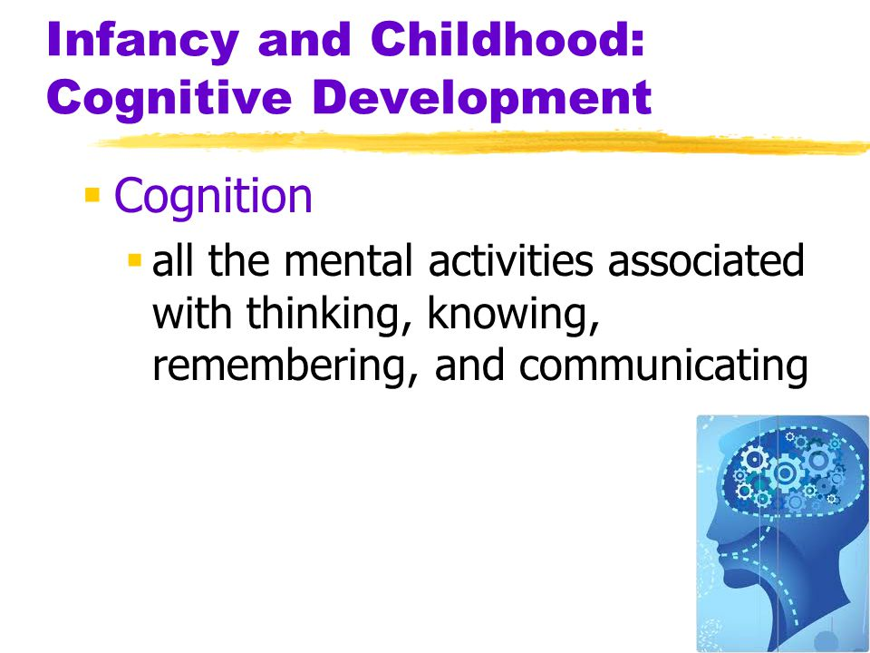 10 Infancy and Childhood: Cognitive Development  Cognition  all the mental activities associated with thinking, knowing, remembering, and communicat