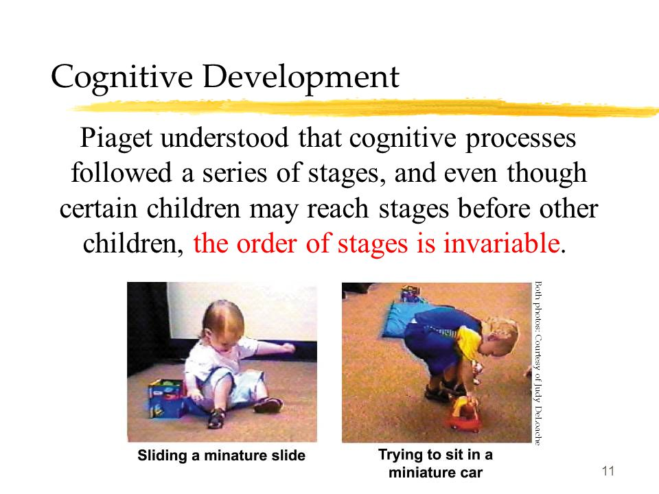 11 Cognitive Development Piaget understood that cognitive processes followed a series of stages, and even though certain children may reach stages bef