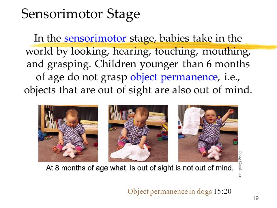19 Sensorimotor Stage In the sensorimotor stage, babies take in the world by looking, hearing, touching, mouthing, and grasping. Children younger than