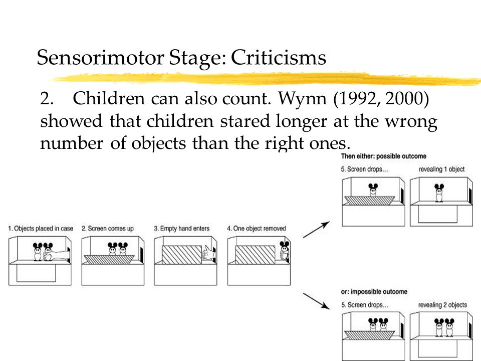 23 Sensorimotor Stage: Criticisms 2. Children can also count. Wynn (1992, 2000) showed that children stared longer at the wrong number of objects than