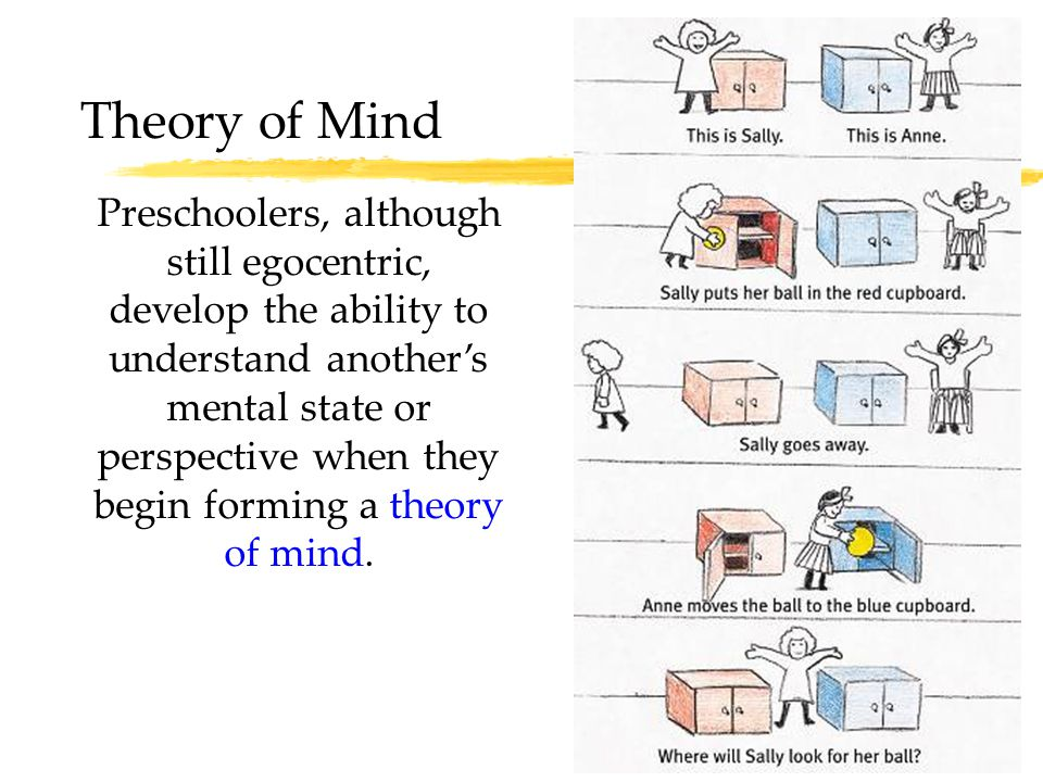 32 Theory of Mind Preschoolers, although still egocentric, develop the ability to understand another's mental state or perspective when they begin for