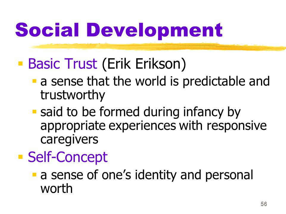 56 Social Development  Basic Trust (Erik Erikson)  a sense that the world is predictable and trustworthy  said to be formed during infancy by appro
