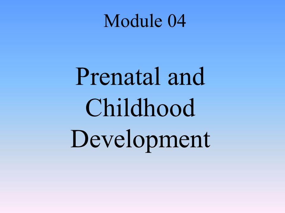 Prenatal and Childhood Development Module 04
