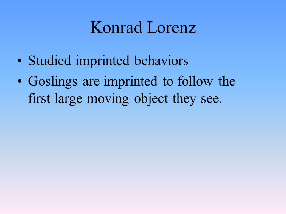 Konrad Lorenz Studied imprinted behaviors Goslings are imprinted to follow the first large moving object they see.