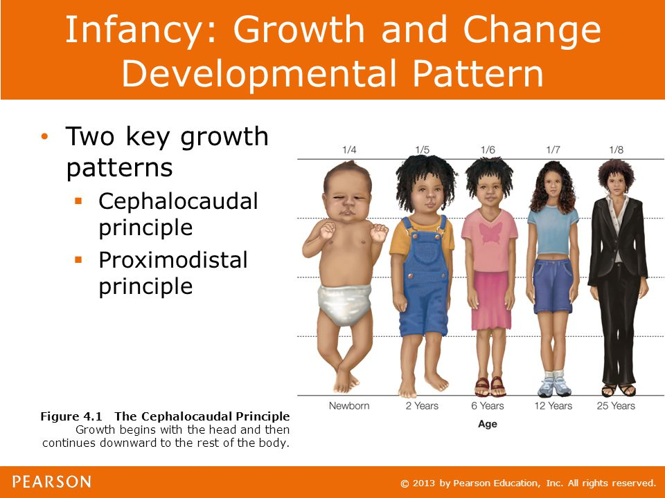 © 2013 by Pearson Education, Inc. All rights reserved. Infancy: Growth and Change Developmental Pattern Two key growth patterns  Cephalocaudal princi