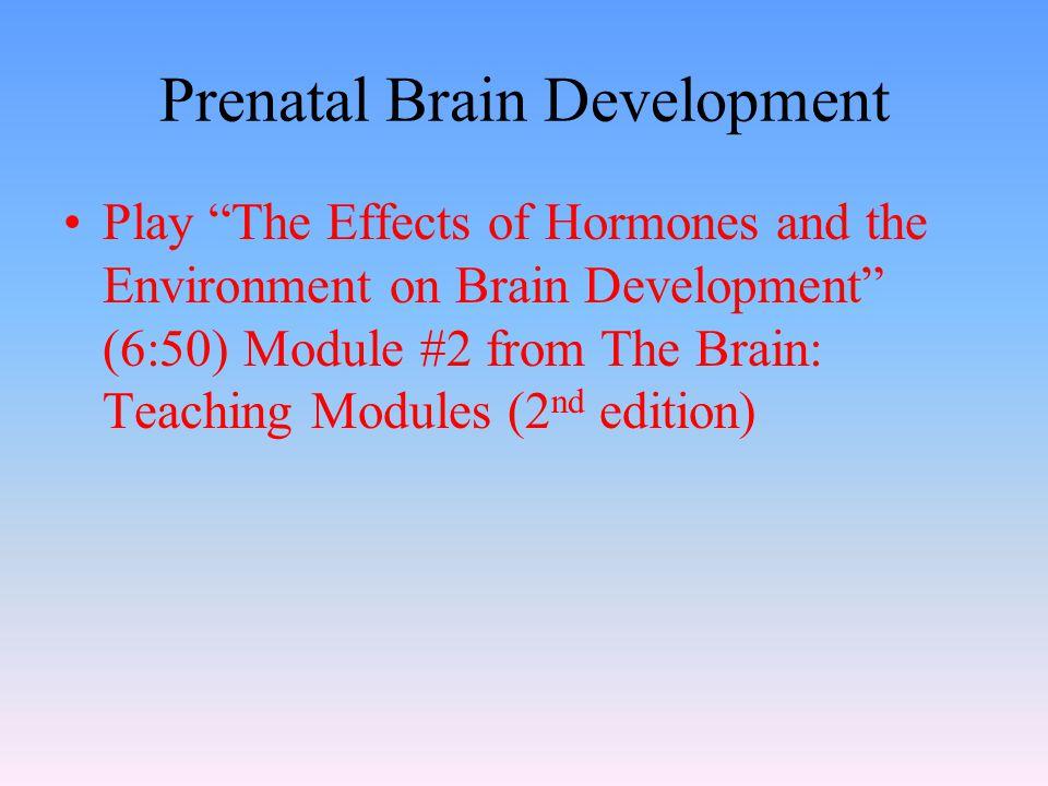 "Prenatal Brain Development Play ""The Effects of Hormones and the Environment on Brain Development"" (6:50) Module #2 from The Brain: Teaching Modules ("
