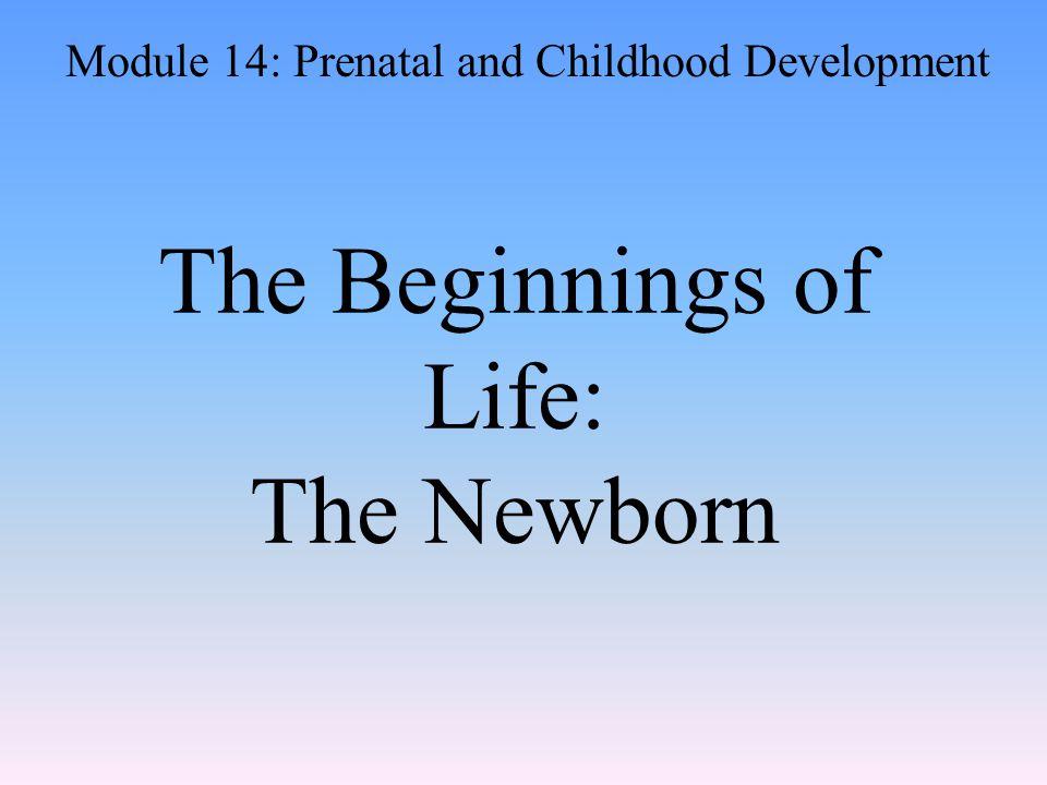 The Beginnings of Life: The Newborn Module 14: Prenatal and Childhood Development