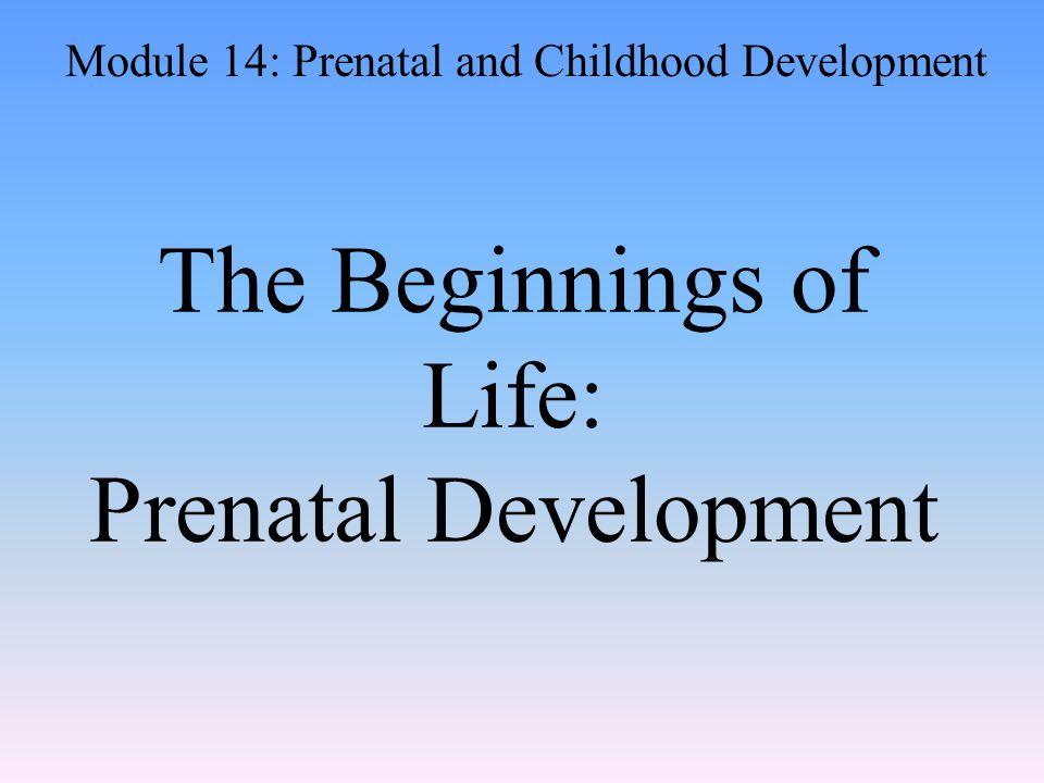 The Beginnings of Life: Prenatal Development Module 14: Prenatal and Childhood Development