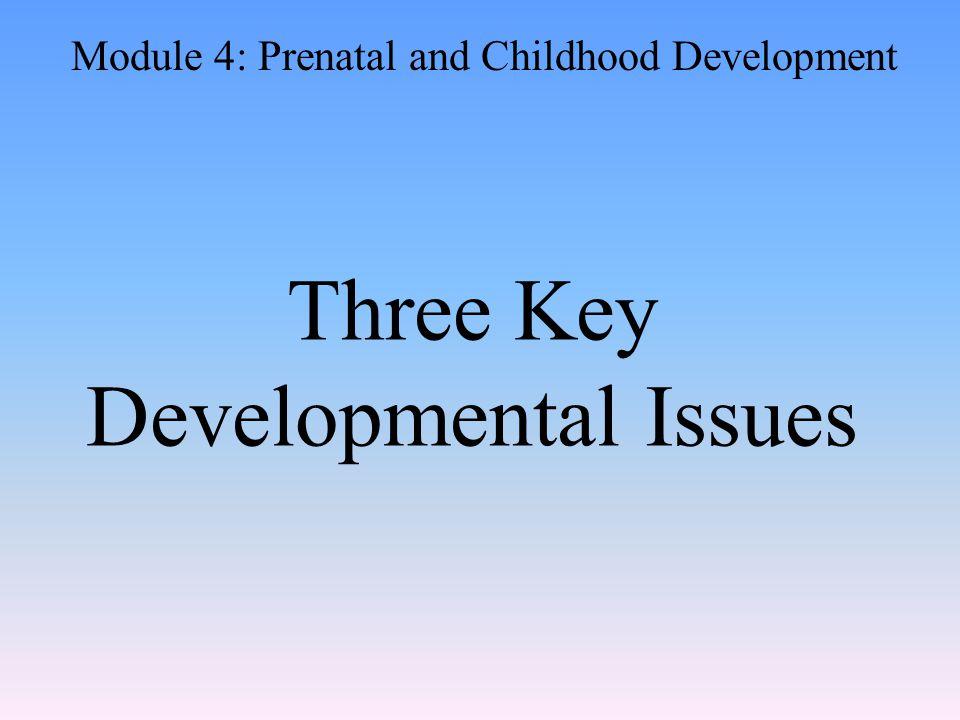 Three Key Developmental Issues Module 4: Prenatal and Childhood Development