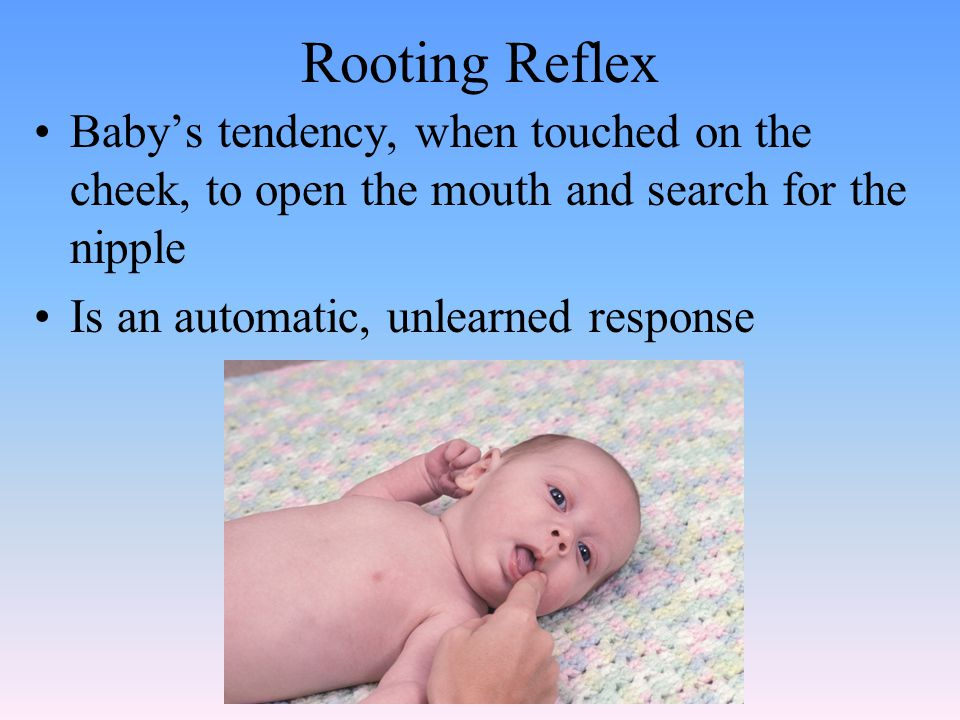 Rooting Reflex Baby's tendency, when touched on the cheek, to open the mouth and search for the nipple Is an automatic, unlearned response