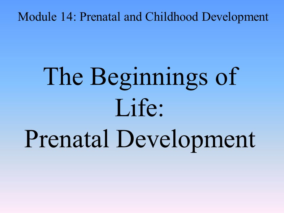 The Beginnings of Life: Prenatal Development Module 14: Prenatal and Childhood Development