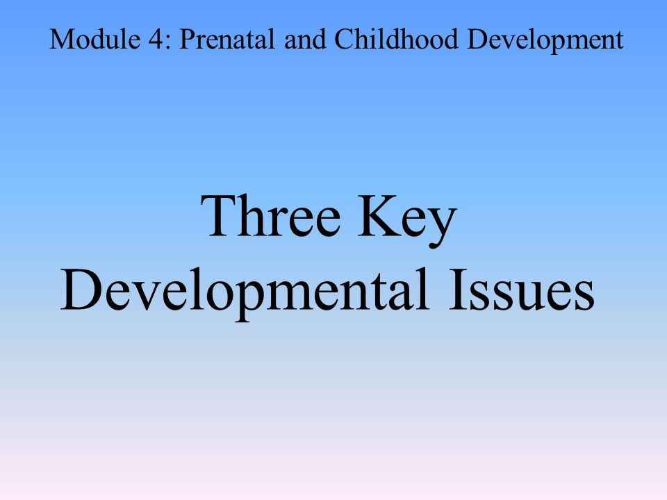 Three Key Developmental Issues Module 4: Prenatal and Childhood Development