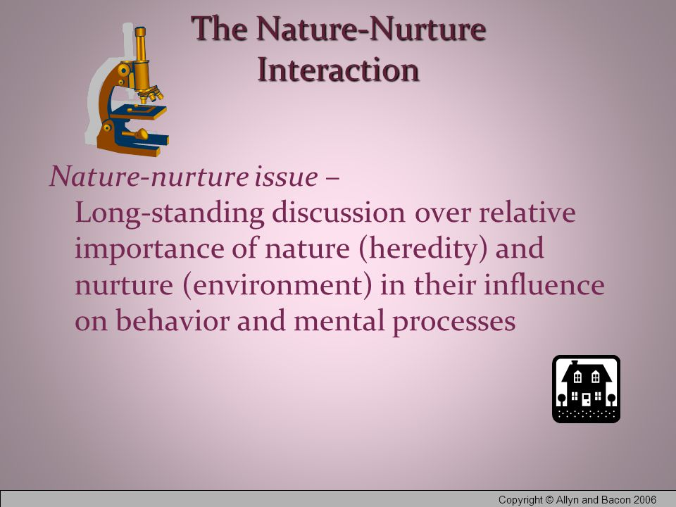 Copyright © Allyn and Bacon 2006 The Nature-Nurture Interaction Nature-nurture issue – Long-standing discussion over relative importance of nature (heredity) and nurture (environment) in their influence on behavior and mental processes