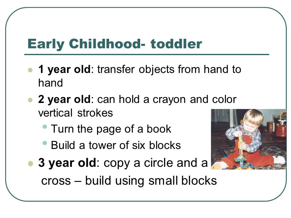 Early Childhood- toddler 1 year old: transfer objects from hand to hand 2 year old: can hold a crayon and color vertical strokes Turn the page of a bo