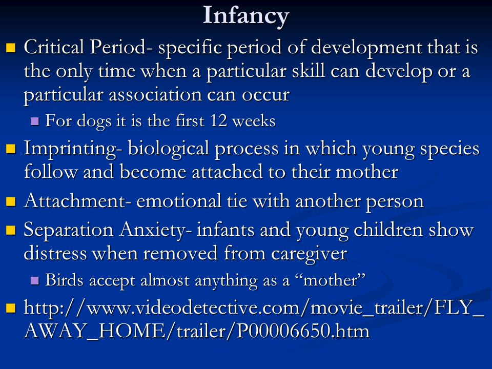 Infancy Critical Period- specific period of development that is the only time when a particular skill can develop or a particular association can occur Critical Period- specific period of development that is the only time when a particular skill can develop or a particular association can occur For dogs it is the first 12 weeks For dogs it is the first 12 weeks Imprinting- biological process in which young species follow and become attached to their mother Imprinting- biological process in which young species follow and become attached to their mother Attachment- emotional tie with another person Attachment- emotional tie with another person Separation Anxiety- infants and young children show distress when removed from caregiver Separation Anxiety- infants and young children show distress when removed from caregiver Birds accept almost anything as a mother Birds accept almost anything as a mother http://www.videodetective.com/movie_trailer/FLY_ AWAY_HOME/trailer/P00006650.htm http://www.videodetective.com/movie_trailer/FLY_ AWAY_HOME/trailer/P00006650.htm