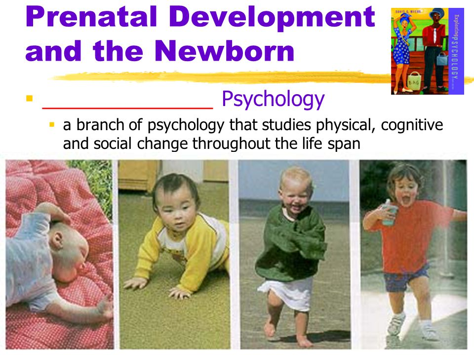 Prenatal Development and the Newborn Life is sexually transmitted