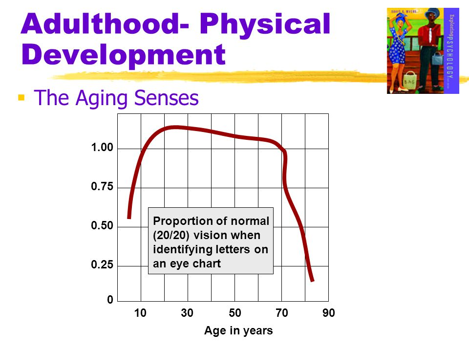 Adulthood- Physical Development  The Aging Senses 1030507090 0 0.25 0.50 0.75 1.00 Proportion of normal (20/20) vision when identifying letters on an