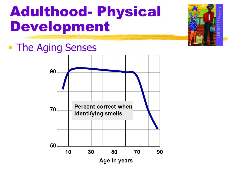 Adulthood- Physical Development  The Aging Senses 1030507090 50 70 90 Percent correct when Identifying smells Age in years