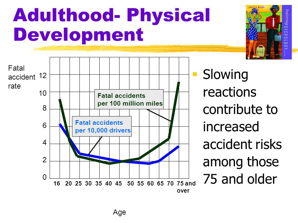 Adulthood- Physical Development  Slowing reactions contribute to increased accident risks among those 75 and older 12 10 8 6 4 2 0 162025303540455055