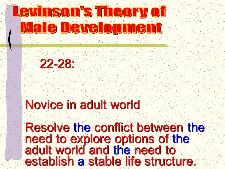 Three major eras: 17-40: Early adulthood 40-60: Middle adulthood 60 on: Late adulthood