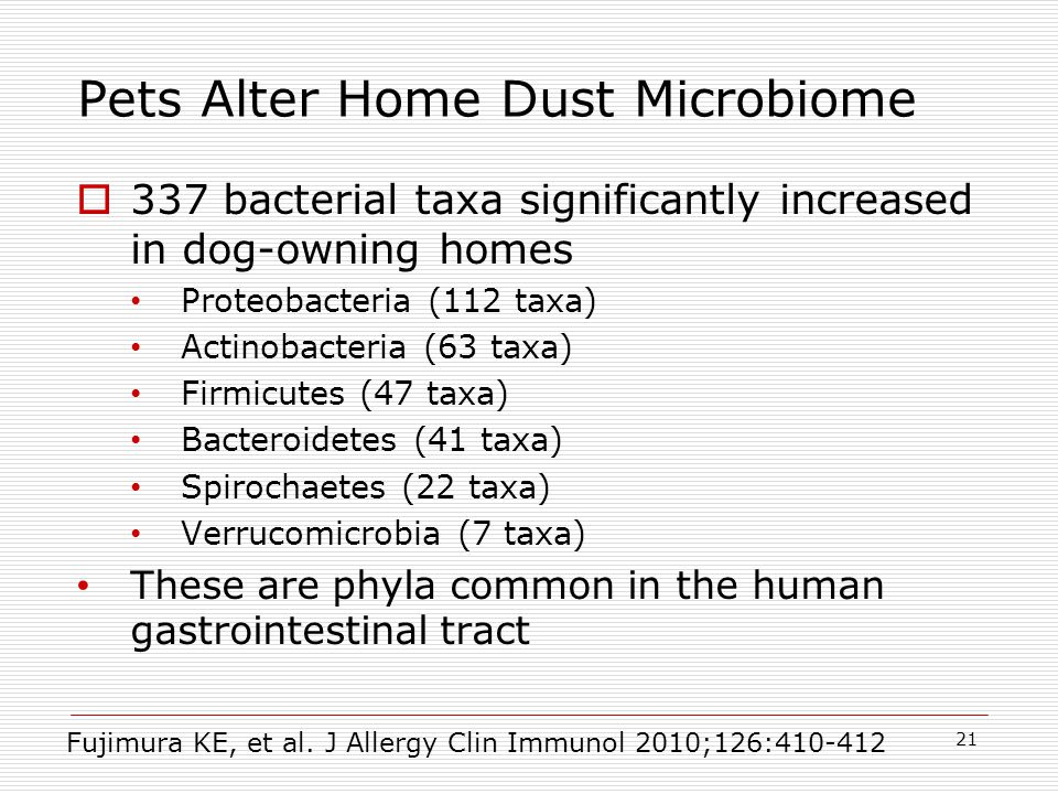 Pets Alter Home Dust Microbiome  337 bacterial taxa significantly increased in dog-owning homes Proteobacteria (112 taxa) Actinobacteria (63 taxa) Firmicutes (47 taxa) Bacteroidetes (41 taxa) Spirochaetes (22 taxa) Verrucomicrobia (7 taxa) These are phyla common in the human gastrointestinal tract 21 Fujimura KE, et al.