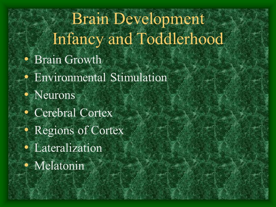Brain Development Infancy and Toddlerhood Brain Growth Environmental Stimulation Neurons Cerebral Cortex Regions of Cortex Lateralization Melatonin