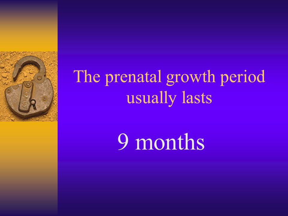 The prenatal growth period usually lasts 9 months