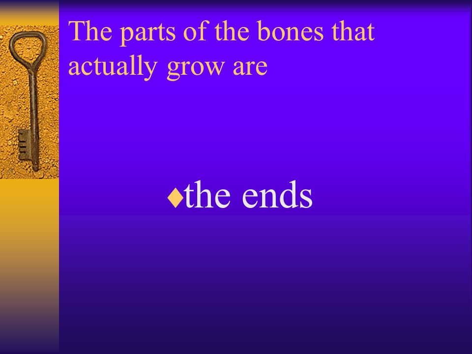 The parts of the bones that actually grow are  the ends