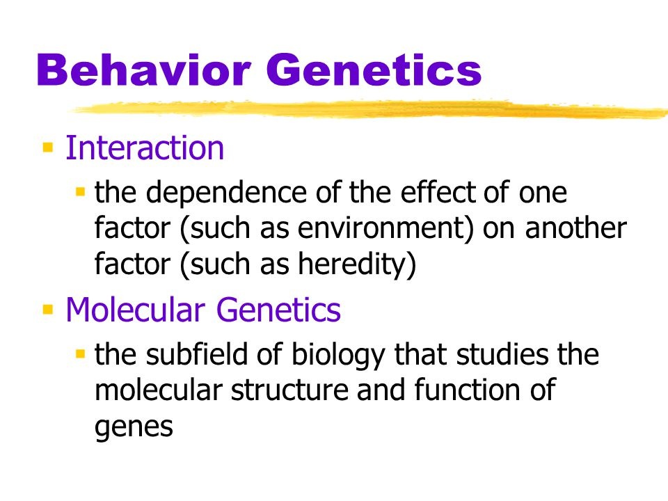 Behavior Genetics  Interaction  the dependence of the effect of one factor (such as environment) on another factor (such as heredity)  Molecular Ge