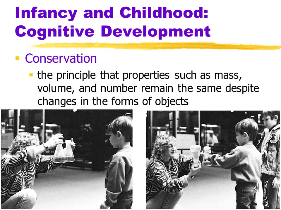 Infancy and Childhood: Cognitive Development  Conservation  the principle that properties such as mass, volume, and number remain the same despite c