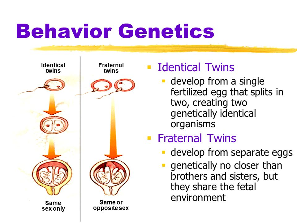 Behavior Genetics  Temperament  a person's characteristic emotional reactivity and intensity  Heritability  the proportion of variation among individuals that we can attribute to genes  may vary, depending on the range of populations and environments studied