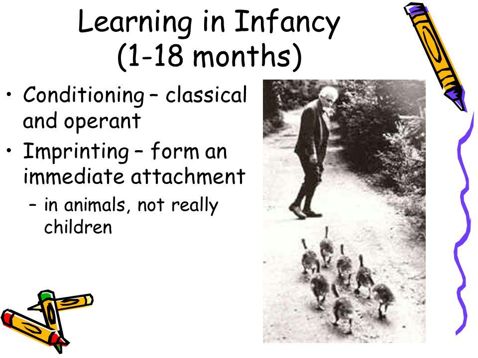 Learning in Infancy (1-18 months) Conditioning – classical and operant Imprinting – form an immediate attachment –in animals, not really children