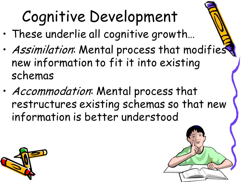 Cognitive Development These underlie all cognitive growth… Assimilation: Mental process that modifies new information to fit it into existing schemas