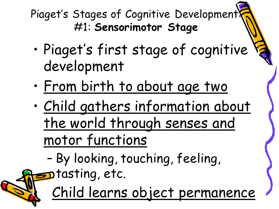 Piaget's Stages of Cognitive Development: #1: Sensorimotor Stage Piaget's first stage of cognitive development From birth to about age two Child gathers information about the world through senses and motor functions –By looking, touching, feeling, tasting, etc.