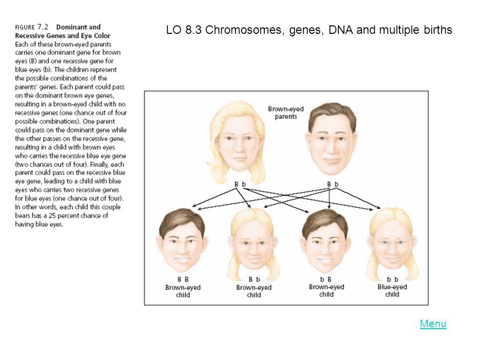 Menu LO 8.3 Chromosomes, genes, DNA and multiple births