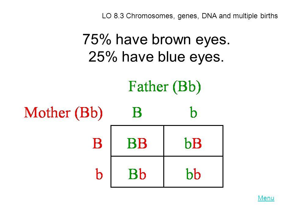 75% have brown eyes. 25% have blue eyes. ) LO 8.3 Chromosomes, genes, DNA and multiple births Menu