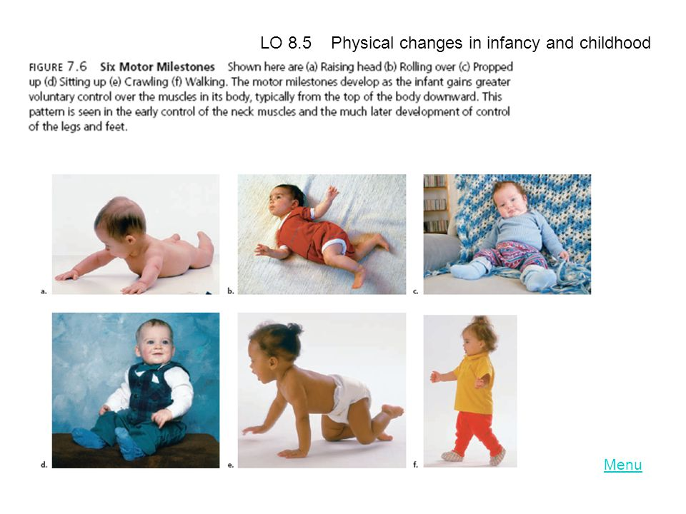 Menu LO 8.5 Physical changes in infancy and childhood