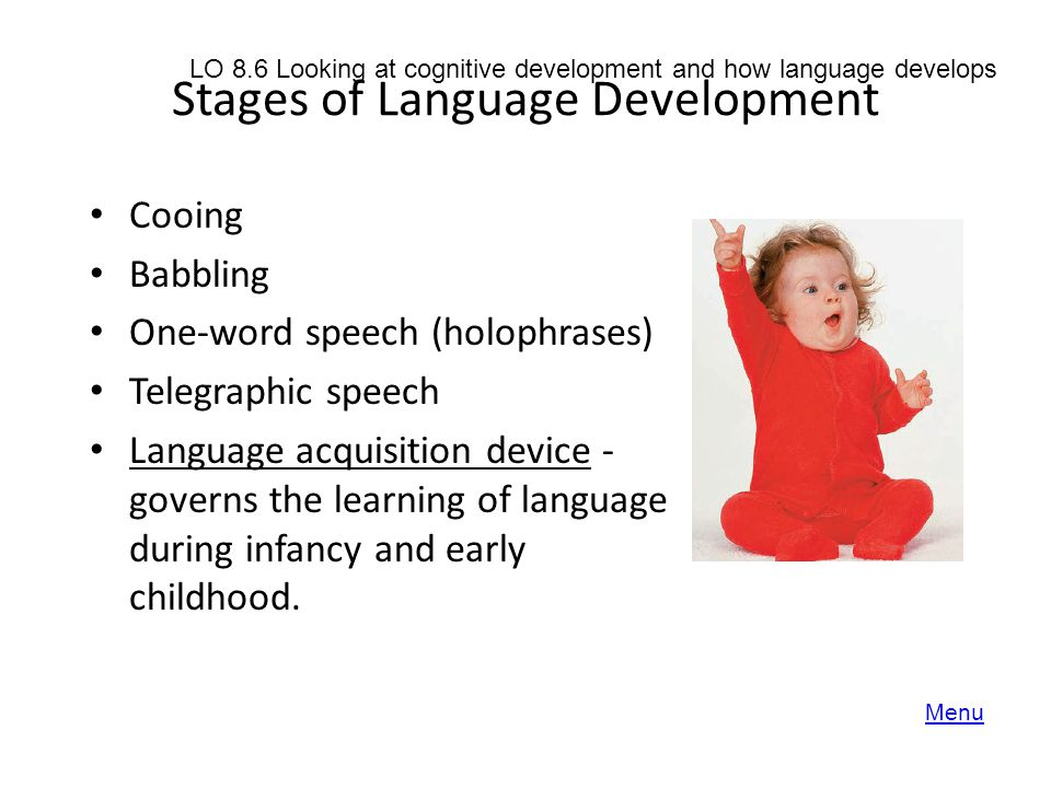 essays on child language development This paper explores a case study with one family with a child displaying slower language development, examining the case in the light of well-known.