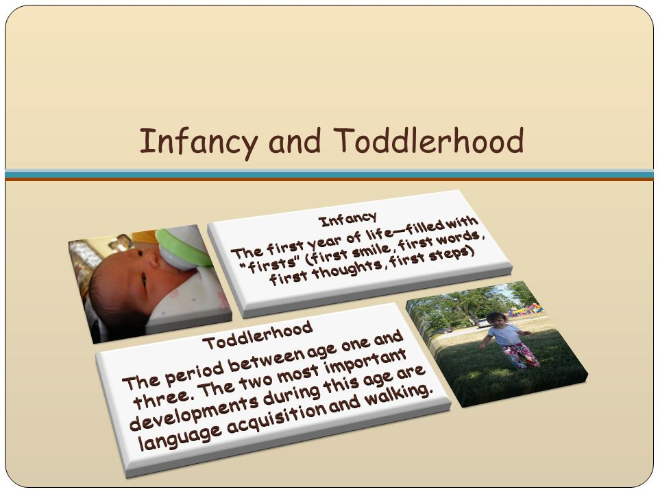 Infant and Toddler Curriculum The curriculum should provide for the child's physical, social, emotional, cognitive, and linguistic development.