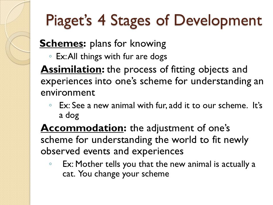 Piaget's 4 Stages of Development Schemes: plans for knowing ◦ Ex: All things with fur are dogs Assimilation: the process of fitting objects and experi