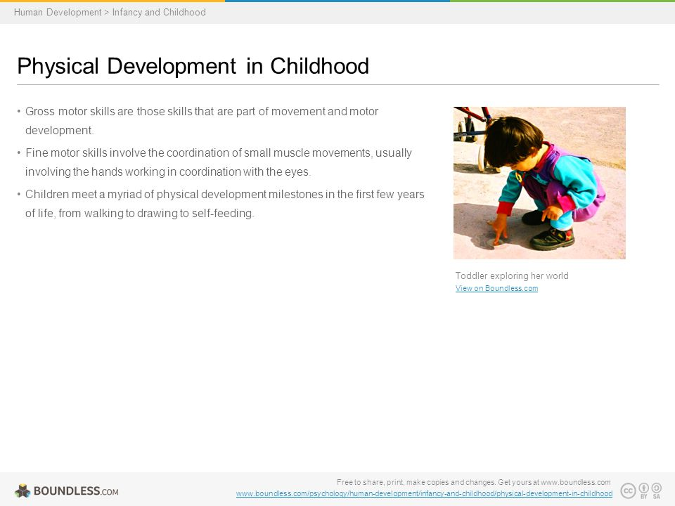 Gross motor skills are those skills that are part of movement and motor development.