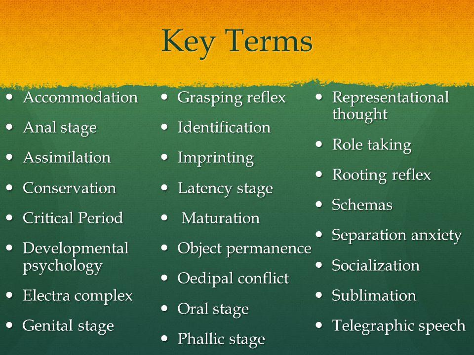 Key Terms Accommodation Accommodation Anal stage Anal stage Assimilation Assimilation Conservation Conservation Critical Period Critical Period Develo