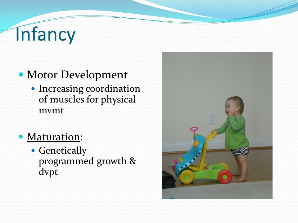 Infancy Motor Development Increasing coordination of muscles for physical mvmt Maturation: Genetically programmed growth & dvpt